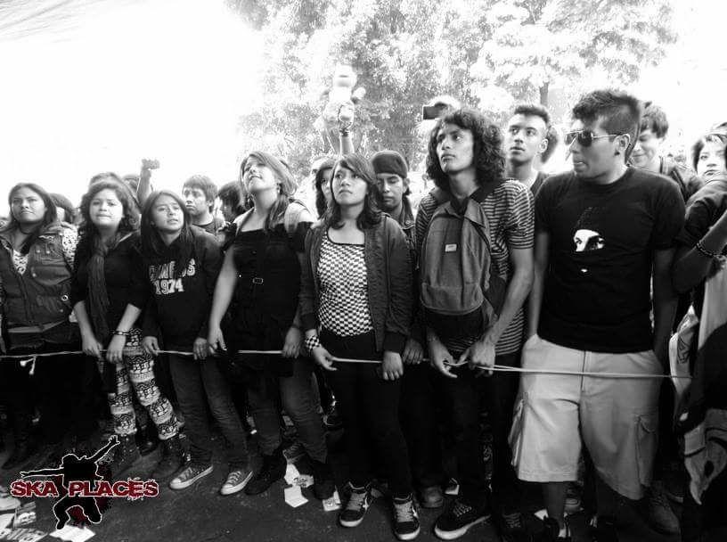 el chopito 2017